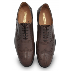 Brown Wingtip Dress Shoe, Brogue Detailing, Argentinian Leather Sole